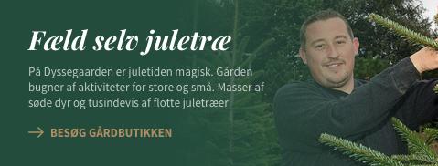 Fælg selv juletræ på Dyssegården